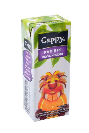 CAPPY 200 ML KARIŞIK NEKTAR resmi